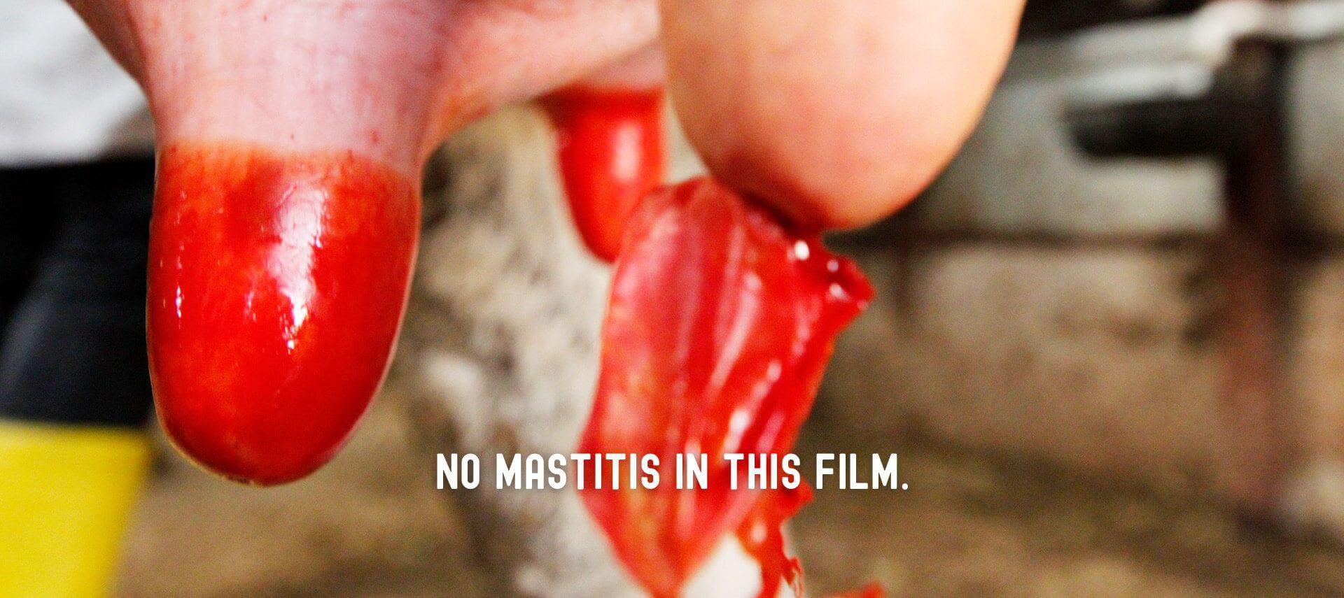 No mastitis in this film