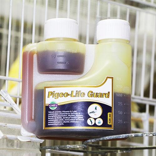 Pigeo-life Guard