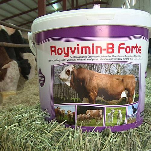 Royvimin B Forte