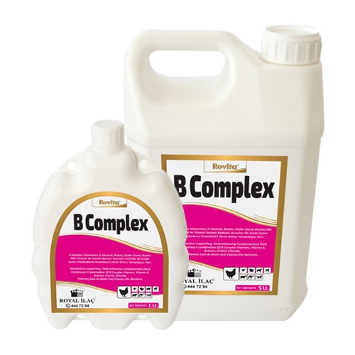 Rovita B Complex