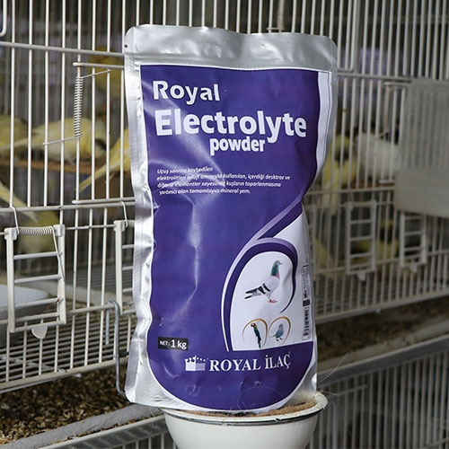 Royal Electrolyte Powder