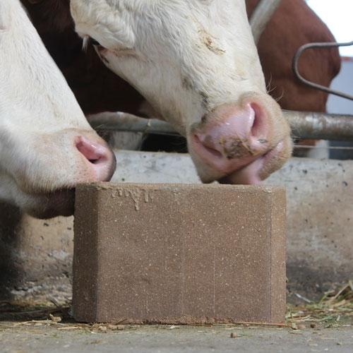 EnergyBox Pre-Calver