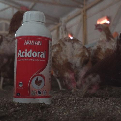 Acidoral Liquid