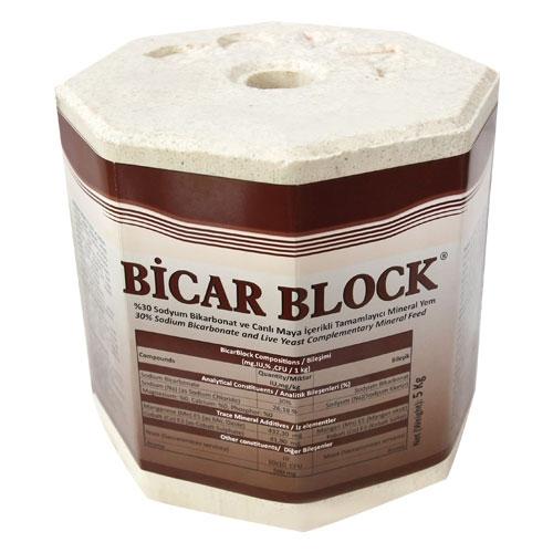 Bicar Block
