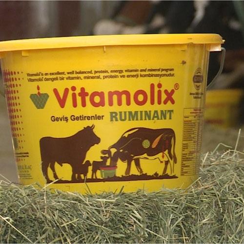 Vitamolix  Ruminant