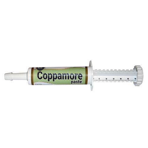 Royal Camel&Horse Coppamore Syringe