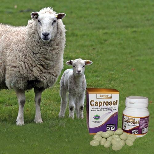 Caprosel